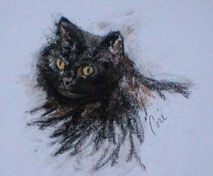Black Cat By Cori Solomon