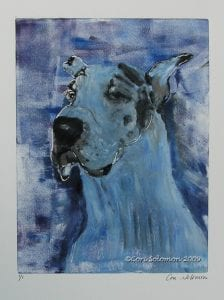 Great Dane Art by Cori Solomon