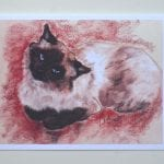 Ragdoll Cat Art by Cori Solomon