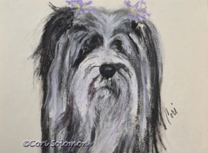 Tibetan Terrier Art by Cori Solomon
