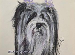 Tibetan Terrier Art by Cori Solomon