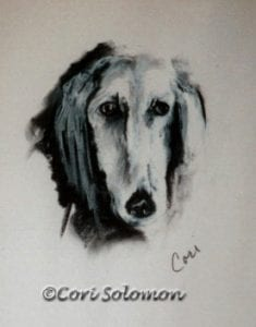 Saluki Art The Long Stare by Cori Solomon