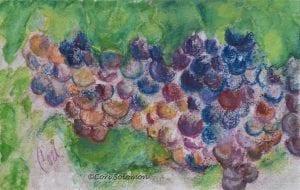 Grape Clusters by Cori Solomon