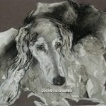 Saluki Mixed Media Art by Cori Solomon