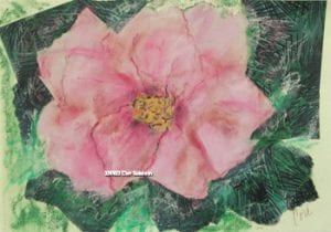 Rose Flower Mixed Media Art by Cori Solomon