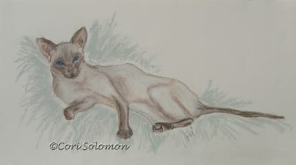 Siamese Cat Art Stretched Out