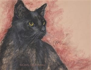 Black Cat Pastel Drawing Cori Solomon