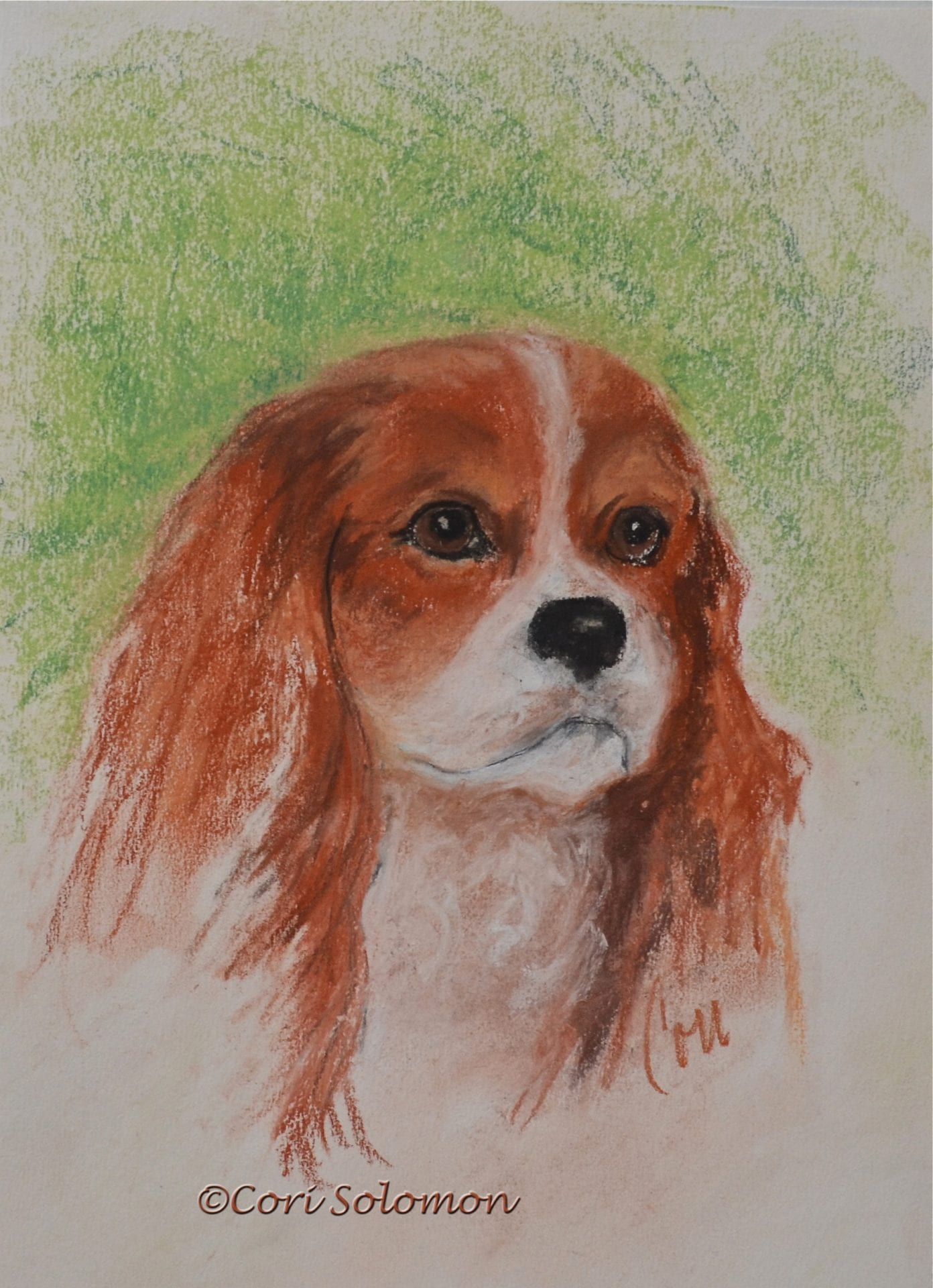 Cavalier At Heart Cavalier Dog Art By Cori Solomon