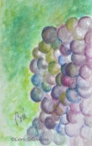 Grape Cluster by Cori Solomon