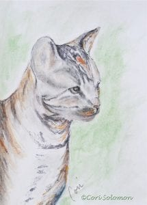 Cat Watercolor By Cori Solomon