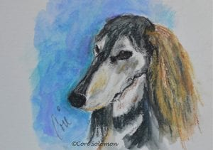 Grizzle Saluki Watercolor by Cori Solomon