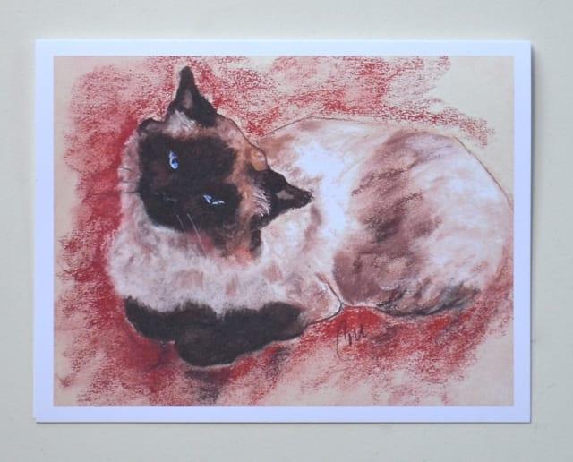 Spirit: Ragdoll Cat