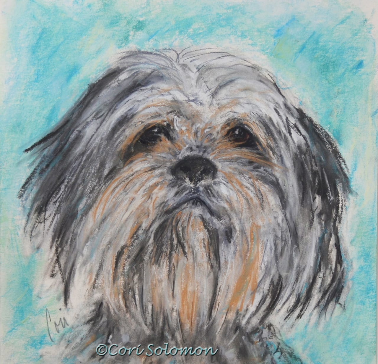 Gizmo: Commissioned Pet Portrait