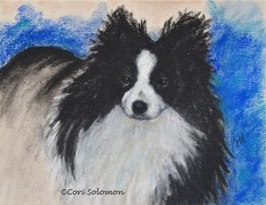Pomeranian Art by Cori Solomon