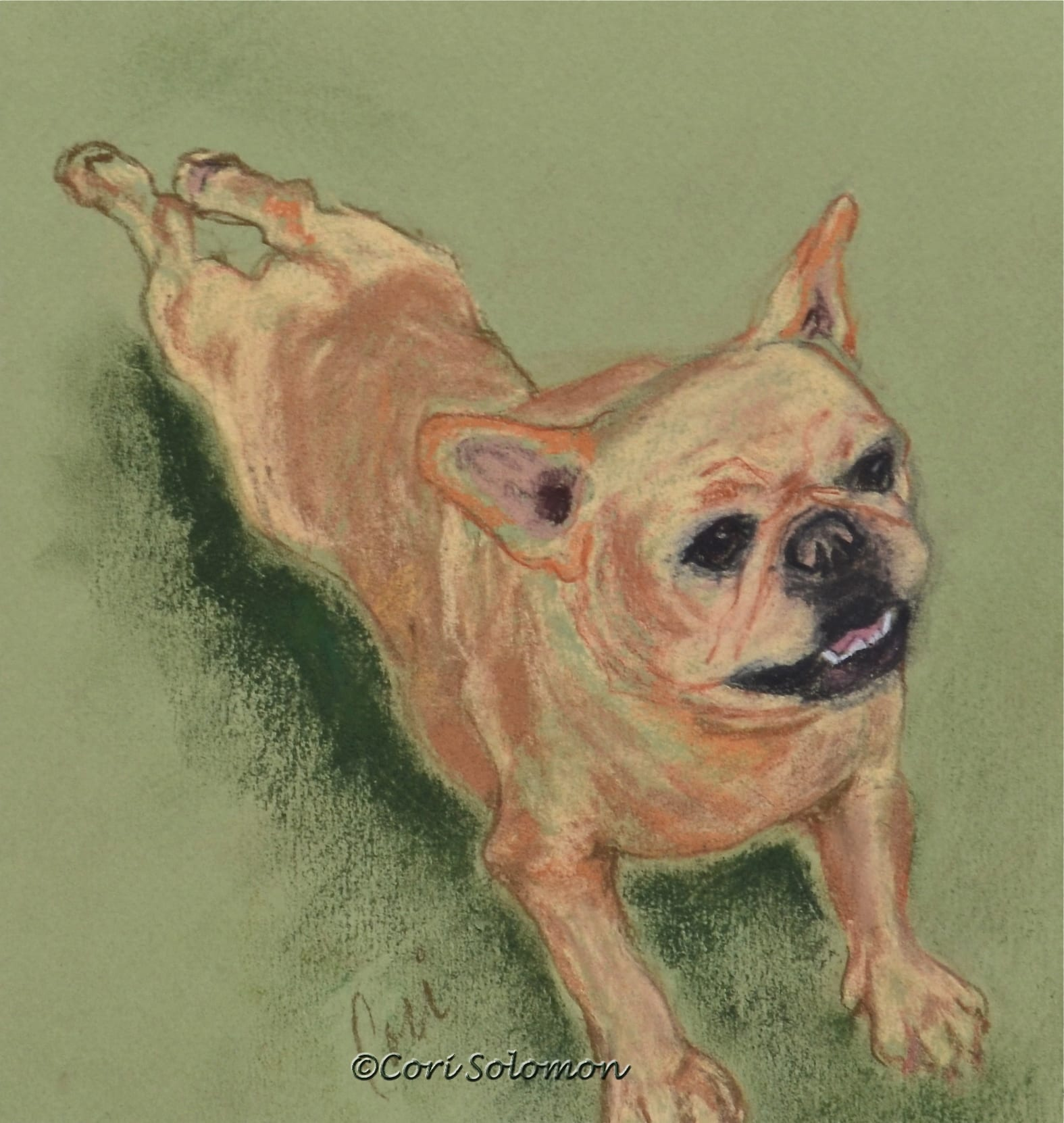 French Bulldog: The Frog Dance – For Sale