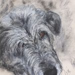 Irish Wolfhound Art
