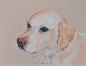 Labrador Retriever Art