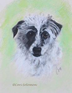 Mixed Breed Dog Pastel Drawing