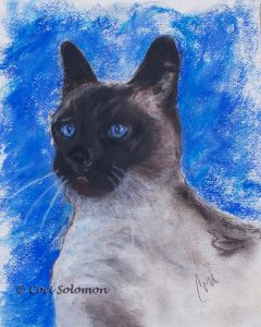 Seal Point Siamese Cat by Cori Solomon