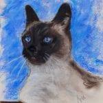 Seal Point Siamese Cat by Cori Solomon