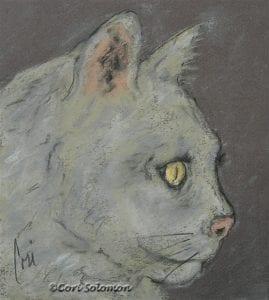 White Cat Drawing by Cori Solomon