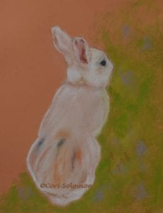 Bunny Rabbit in the Garden by Cori Solomon