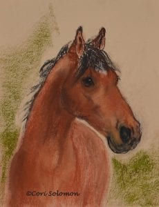 Chestnut Horse by Cori Solomon