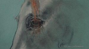 Doodles Eye Horse Art by Cori Solomon