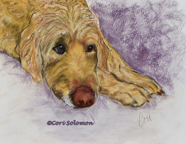 Goldendoodle Art by Cori Solomon