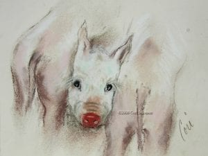 Three Pigs, drawing by Cori Solomon