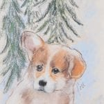 Pembroke Welsh Corgi Puppy by Cori Solomon