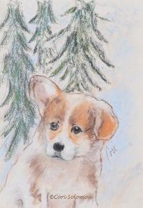 Pembroke Welsh Corgi Puppy by Cori Solomon