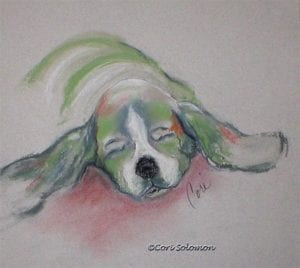 Basset Hound Dog Art by Cori Solomon