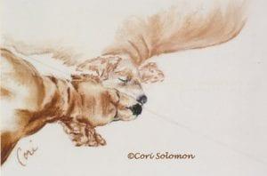 Cocker Spaniel Dog Art by Cori Solomon
