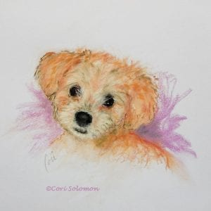 Goldendoodle Puppy by Cori Solomon
