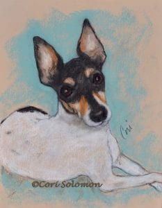 Toy Fox Terrier by Cori Solomon