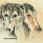 Saluki Monotype by Cori Solomon