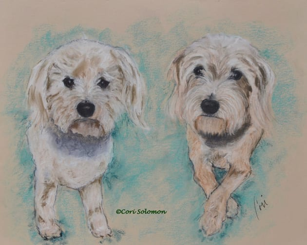 Fred and Wilma, Mixed Breed Dogs by Cori Solomon