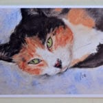 Calico Cat Note Cards by Cori Solomon