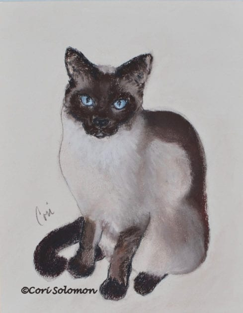 Siamese Cat by Cori Solomon
