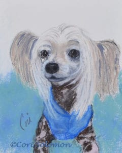 Chinese Crested Dog Art by Cori Solomon