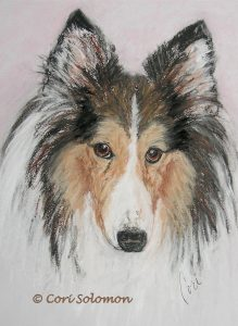 Shetland Sheepdog Tooney by Cori Soloomon