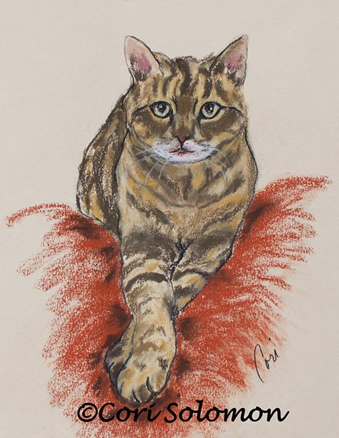 Tabby Cat Furry Friend- Elvis by Cori Solomon