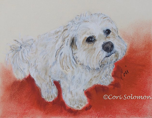 Small White Dog Rosie by Cori Solomon
